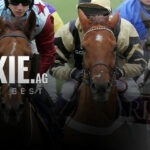 Best Horse Racing Sportsbooks Online Racebooks