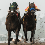 Kentucky Derby Media Poll Predictions 2019