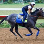 Roadster Kentucky Derby Underdogs