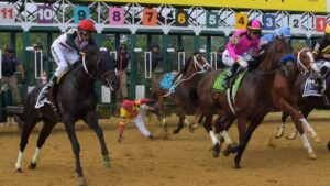 Bodexpress Belmont Stakes Online Betting