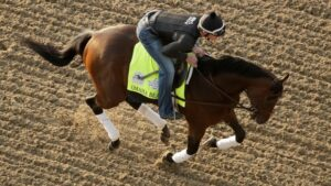 Omaha Beach Betting Favorite Kentucky Derby 2019